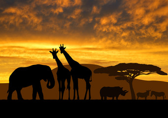 giraffes,elephant and rhino over sunrise