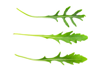 Rocket leaves