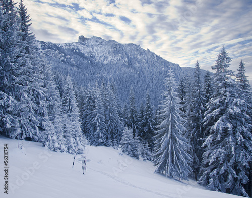 winter mountain landscape in forest, Romanian Carpathians