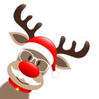 Rudolph Glasses & Beard Diagonal