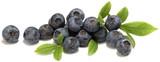 frutti di bosco - 56317170