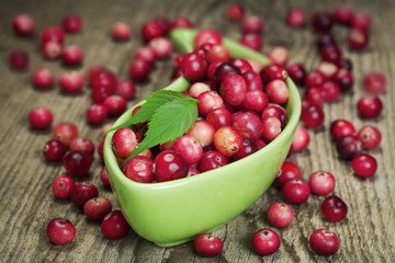 Freshly harvested organic red Cranberries in container on boards