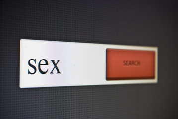 Internet search bar with phrase sex