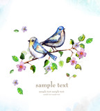 Fototapety watercolor card with a bird