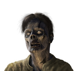 Zombie Portrait - on white
