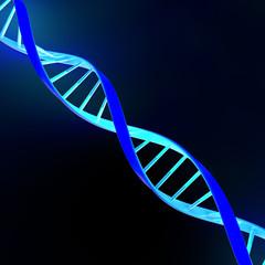 Dna eliche cellule struttura molecola