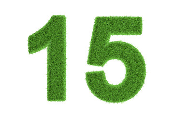 Number 15 with a green grass texture