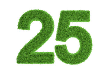 Number 25 with a green grass texture