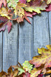 Autumn leaves on vintage boards background
