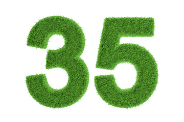 Number 35 with a green grass texture