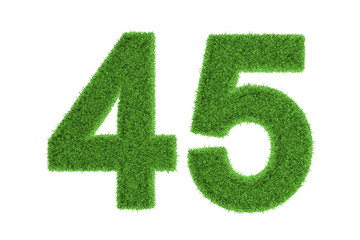 Number 45 with a green grass texture