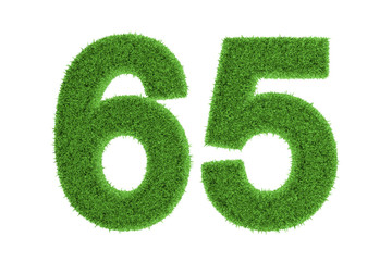Green eco-friendly symbol of number 65, on white