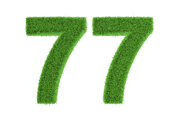 Number 77 with a green grass texture