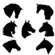 Horse heads silhouettes - 56324378