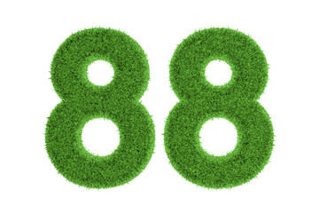Number 88 with a green grass texture