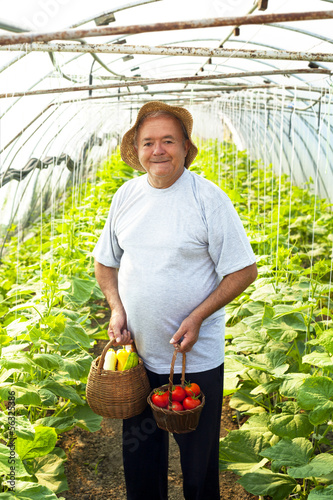 elderly man vegetable garden