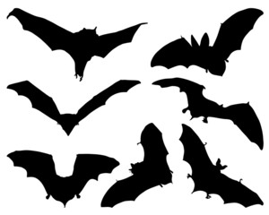Silhouettes  of bats, vector