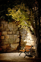 benc, tree and old stone wall