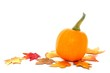 Single pumpkin with scattered leaves
