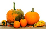 Group of autumn pumpkins and gourds