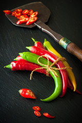 Hot chili and vintage knife for chopping herbs