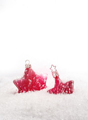 two christmas stars in fake snow