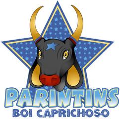 Parintins Boi Caprichoso