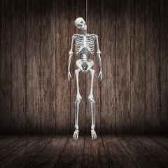 skeleton hangman's noose in dark wood room
