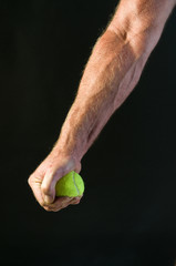 study - man's arm and hand squeezing tennis ball