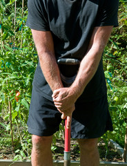 gardener with shovel by tomato patch