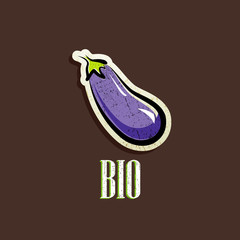 vintage illustration with an eggplant