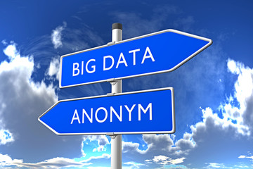 BIG DATA / ANONYM