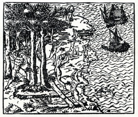 Logging brazil nut trees (16. century)