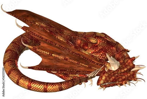Red Scaled Dragon Sleeping - 56355144