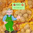 Kartoffeln, Biobauer