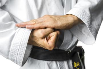 Karate concept