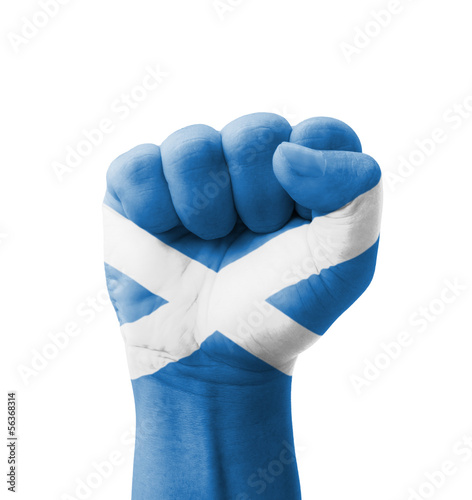 Fist of Scotland flag painted, multi purpose concept