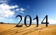 2014 Homme Plage
