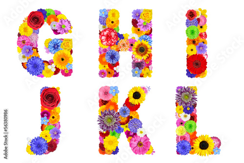 Floral Alphabet Isolated on White - Letters G, H, I, J, K, L