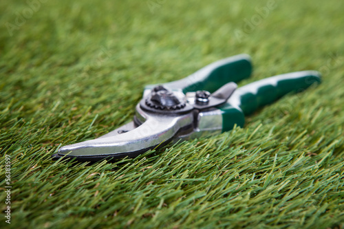 Pliers Gardening Tool On Green Grass