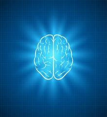 brain blueprint