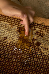 young hand takes honey from a honeycomb