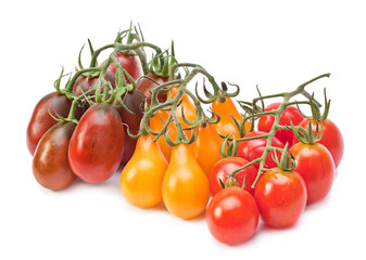 Branch varicolored cherry tomatoes