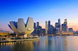 canvas print picture - Singapore Skyline