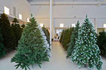 Storage room with rows of artificial Christmas trees