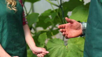 Close up on gardeners shaking hands