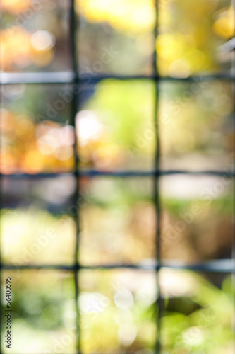 Garden view through window frame
