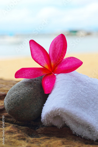 Frangipani flowers - pink flowers and a white towel.