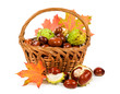 chestnuts with autumn leaves in a basket