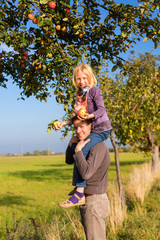 Father and daughter picking apple in autumn or fall